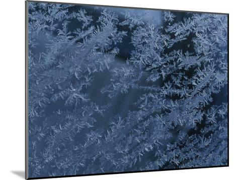 A Close View of Autumn Frost on a Car Window-George F^ Mobley-Mounted Photographic Print