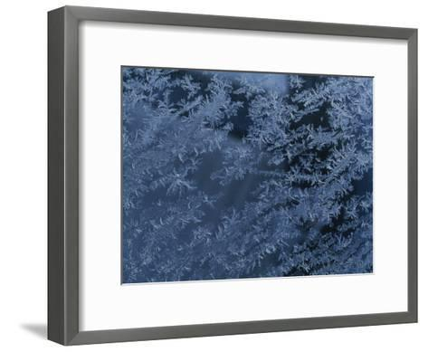 A Close View of Autumn Frost on a Car Window-George F^ Mobley-Framed Art Print