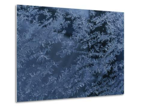 A Close View of Autumn Frost on a Car Window-George F^ Mobley-Metal Print