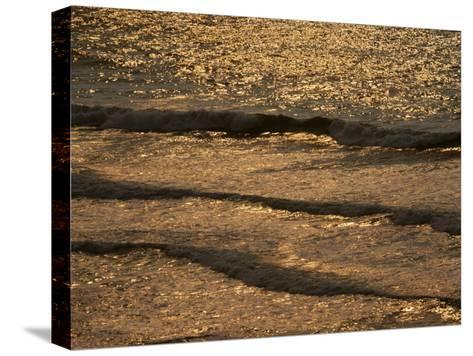 The Golden Surf Crashes on the Olympic Peninsula at Sunset-Sam Abell-Stretched Canvas Print