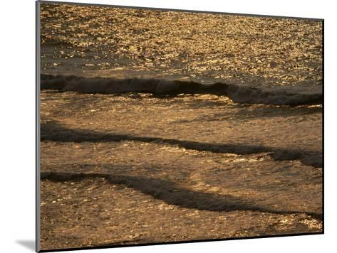 The Golden Surf Crashes on the Olympic Peninsula at Sunset-Sam Abell-Mounted Photographic Print