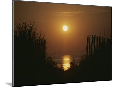 Sunrise over the Ocean Silhouettes Dunes and Erosion Fences-Stephen St^ John-Mounted Photographic Print