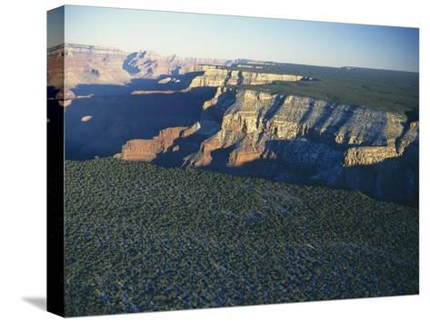 Aerial View of Kaibab National Forest at the Grand Canyon Rim-Norbert Rosing-Stretched Canvas Print