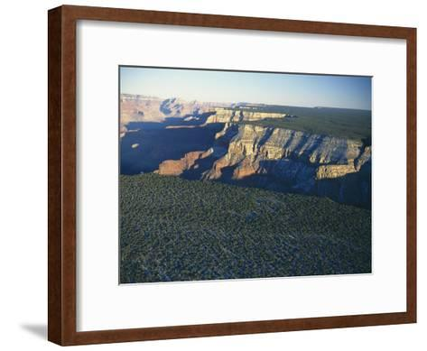 Aerial View of Kaibab National Forest at the Grand Canyon Rim-Norbert Rosing-Framed Art Print