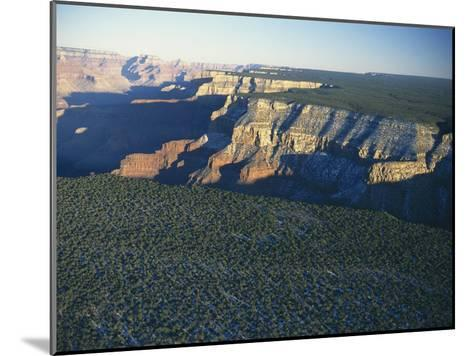 Aerial View of Kaibab National Forest at the Grand Canyon Rim-Norbert Rosing-Mounted Photographic Print