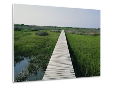 Walkway Above Wetlands-Stephen Alvarez-Metal Print