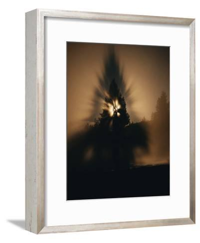 The Moon and a Tree Reflected in Water-Sam Abell-Framed Art Print