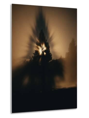 The Moon and a Tree Reflected in Water-Sam Abell-Metal Print