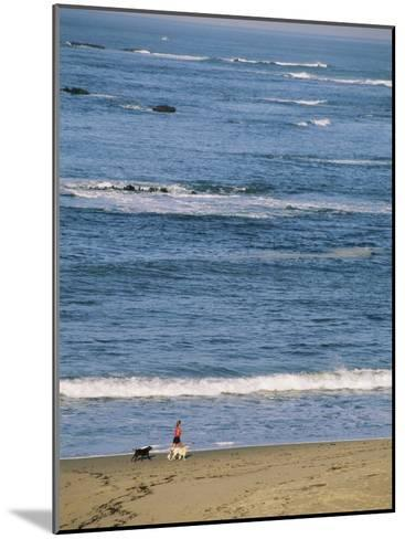 A Woman and Two Dogs Walk Along the Shorline-Roy Toft-Mounted Photographic Print