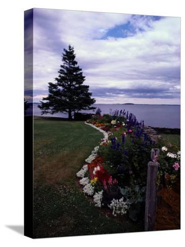 Flower Bed and Tree Overlooking the Water-Sam Abell-Stretched Canvas Print