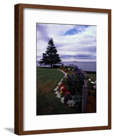 Flower Bed and Tree Overlooking the Water-Sam Abell-Framed Art Print