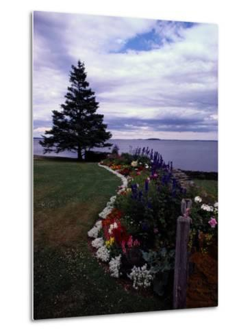 Flower Bed and Tree Overlooking the Water-Sam Abell-Metal Print