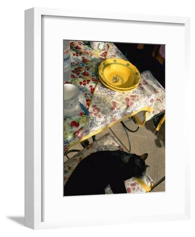 A Cat Lies on a Chair by a Table That is Set for a Meal-Tino Soriano-Framed Art Print