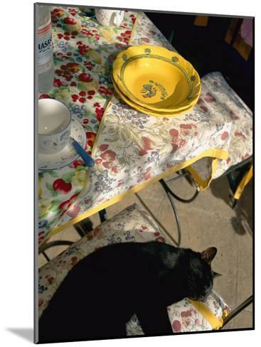 A Cat Lies on a Chair by a Table That is Set for a Meal-Tino Soriano-Mounted Photographic Print