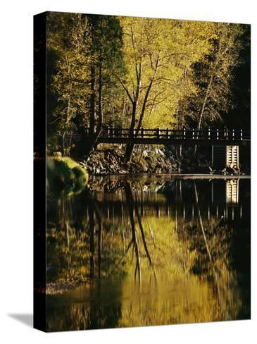 Trees and a Footbridge are Reflected in the Merced River-Marc Moritsch-Stretched Canvas Print