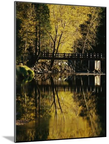 Trees and a Footbridge are Reflected in the Merced River-Marc Moritsch-Mounted Photographic Print