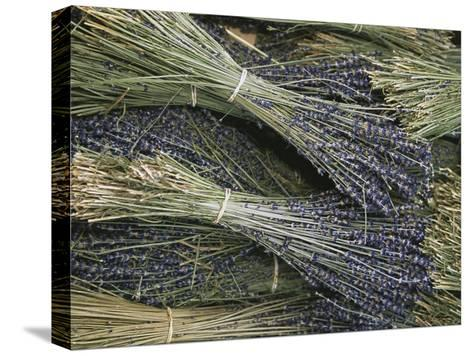 Sprigs of Lavender, Provence Region, France-Nicole Duplaix-Stretched Canvas Print