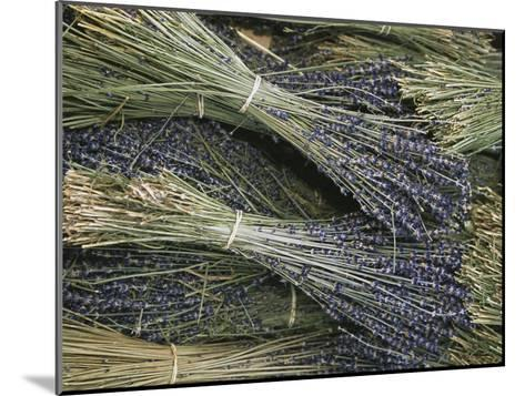 Sprigs of Lavender, Provence Region, France-Nicole Duplaix-Mounted Photographic Print