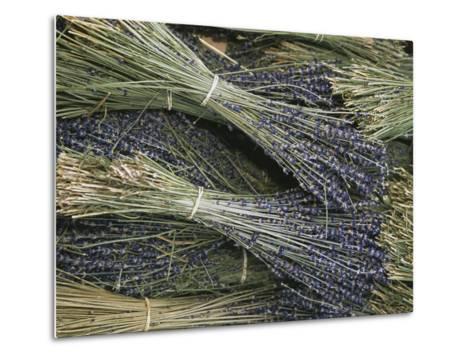 Sprigs of Lavender, Provence Region, France-Nicole Duplaix-Metal Print