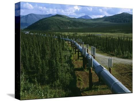 The Trans-Alaska Pipeline Runs Through the Alaskan Wilderness-Melissa Farlow-Stretched Canvas Print