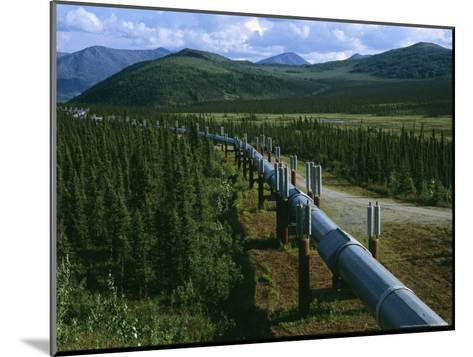 The Trans-Alaska Pipeline Runs Through the Alaskan Wilderness-Melissa Farlow-Mounted Photographic Print