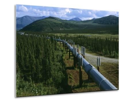 The Trans-Alaska Pipeline Runs Through the Alaskan Wilderness-Melissa Farlow-Metal Print