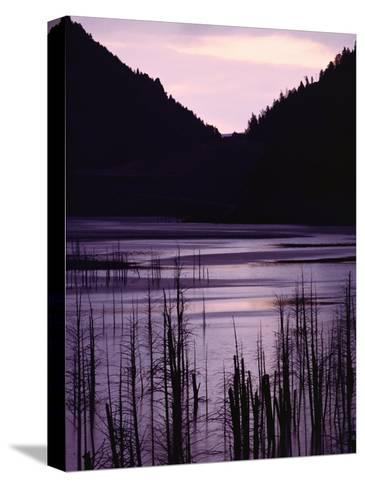 Earthquake Lake, Madison River Quake Area, Gallatin National Forest-Raymond Gehman-Stretched Canvas Print