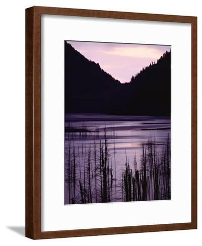 Earthquake Lake, Madison River Quake Area, Gallatin National Forest-Raymond Gehman-Framed Art Print