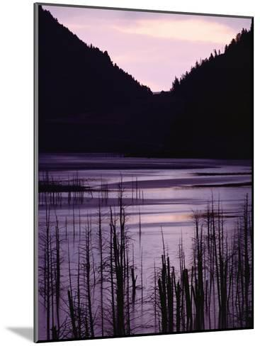 Earthquake Lake, Madison River Quake Area, Gallatin National Forest-Raymond Gehman-Mounted Photographic Print