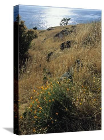 A Scenic Water View from Atop a Hill-Raymond Gehman-Stretched Canvas Print
