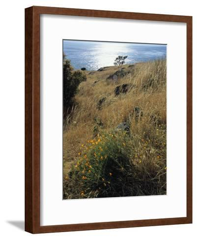 A Scenic Water View from Atop a Hill-Raymond Gehman-Framed Art Print