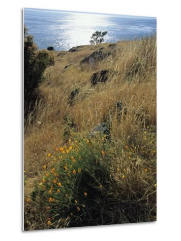 A Scenic Water View from Atop a Hill-Raymond Gehman-Metal Print
