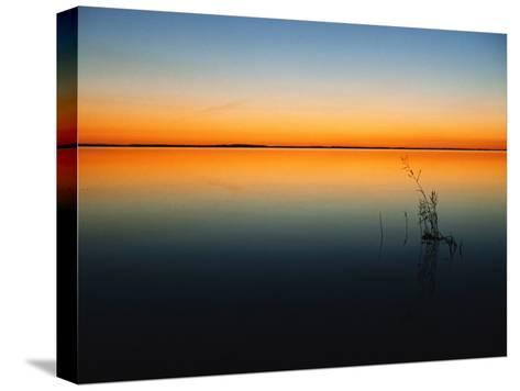 Still Waters of Lake at Twilight, Muritz National Park, Germany-Norbert Rosing-Stretched Canvas Print