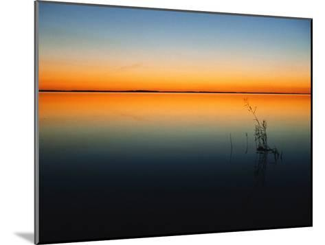 Still Waters of Lake at Twilight, Muritz National Park, Germany-Norbert Rosing-Mounted Photographic Print