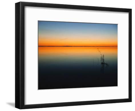 Still Waters of Lake at Twilight, Muritz National Park, Germany-Norbert Rosing-Framed Art Print
