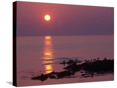 Sunrise, Bornholm, Denmark-Tina Buckman-Stretched Canvas Print
