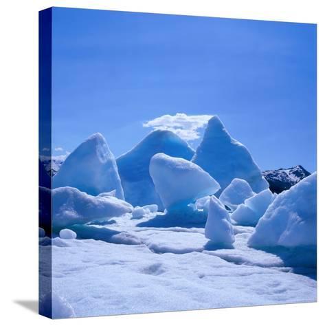 Icebergs in Alsek Lake, Glacier Bay National Park & Preserve, Alaska, USA-Wes Walker-Stretched Canvas Print