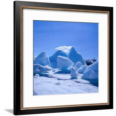 Icebergs in Alsek Lake, Glacier Bay National Park & Preserve, Alaska, USA-Wes Walker-Framed Art Print