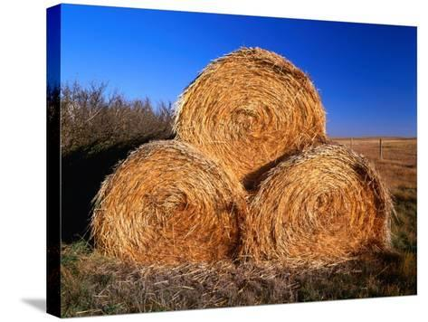 Three Hay Bales on Farm in Red River Valley, Alberta, Canada-Barnett Ross-Stretched Canvas Print