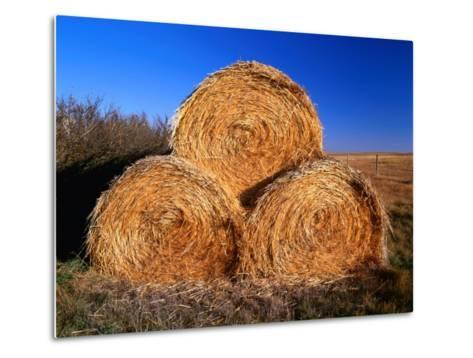 Three Hay Bales on Farm in Red River Valley, Alberta, Canada-Barnett Ross-Metal Print