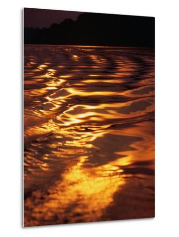 Sunlight Reflecting off the Dark Water of the Rio Negro, Amazonas, Brazil-Tom Cockrem-Metal Print