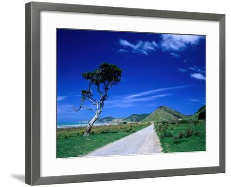 Gravel Road Linking Te Araroa to East Cape, Gisborne, New Zealand-Barnett Ross-Framed Art Print