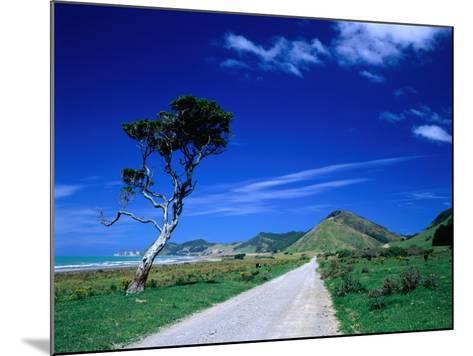 Gravel Road Linking Te Araroa to East Cape, Gisborne, New Zealand-Barnett Ross-Mounted Photographic Print