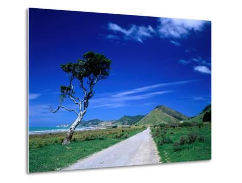 Gravel Road Linking Te Araroa to East Cape, Gisborne, New Zealand-Barnett Ross-Metal Print
