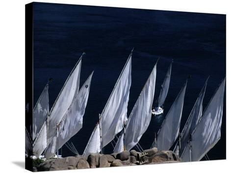 Fellucas Sailing, Aswan, Egypt-Izzet Keribar-Stretched Canvas Print