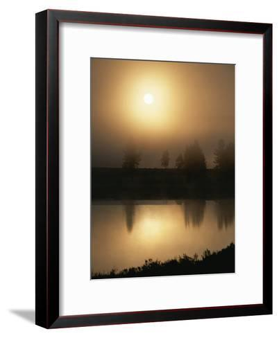 Silhouetted Trees Along the Yellowstone River at Sunrise-Tom Murphy-Framed Art Print