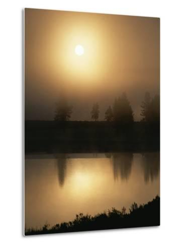 Silhouetted Trees Along the Yellowstone River at Sunrise-Tom Murphy-Metal Print