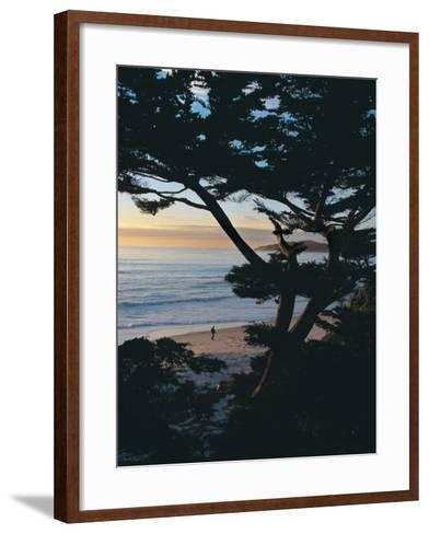 Sunset on Beach with Trees, CA-Claire Rydell-Framed Art Print