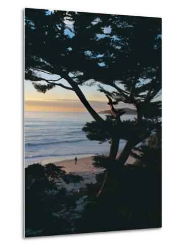 Sunset on Beach with Trees, CA-Claire Rydell-Metal Print