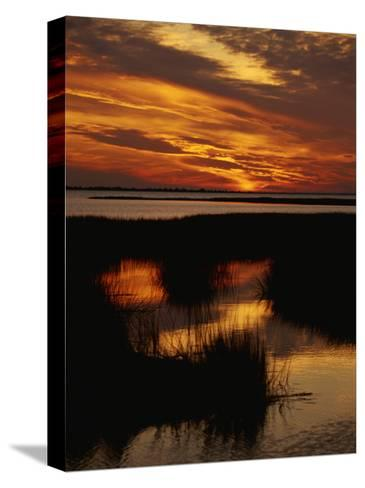 Sunset over a Salt Marsh with Cordgrass-Raymond Gehman-Stretched Canvas Print